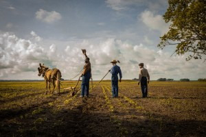 "A scene from Dee Rees' ""Mudbound"""