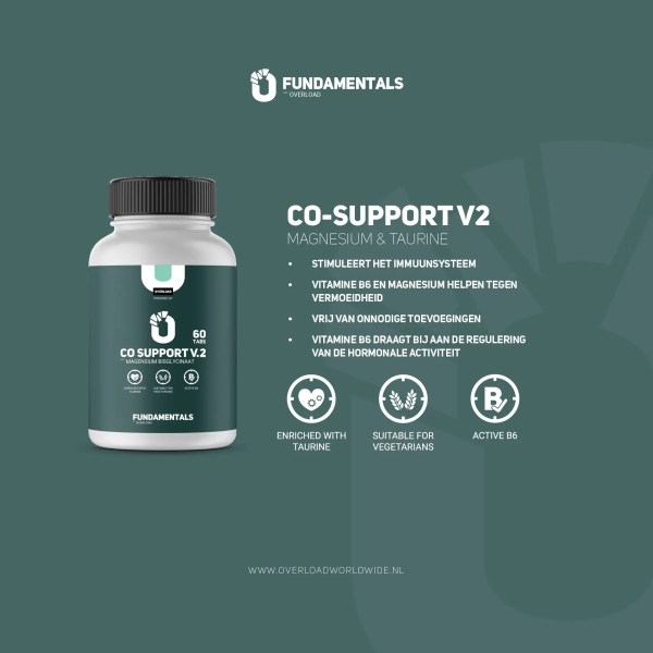 Fundamentals CO-Support V2 Magnesium & Taurine