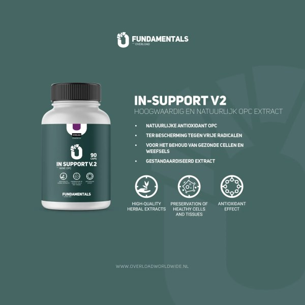Fundamentals IN-Support V2 OPC Extract