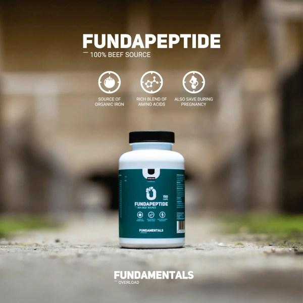 Fundamentals Fundapeptide Bloedplasma