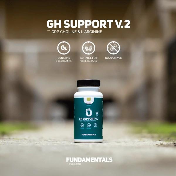 Fundamentals GH-Support V2