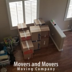 Picture of Moving Boxes perfectly prepared for relocation by Movers and Movers team.