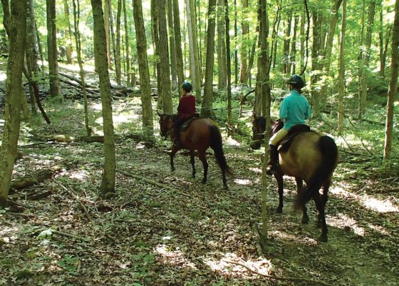 Great-Parks-Horse-Trails