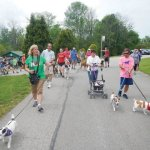The Delaneys and the Troilos lead the Walkathon