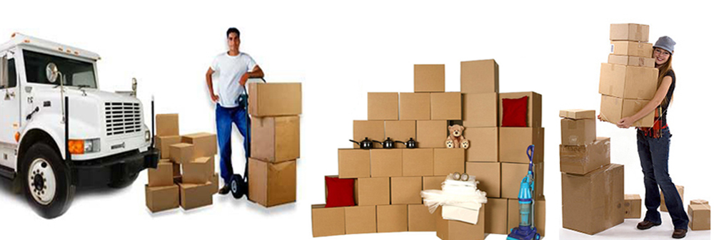 Movers And Packers In Dubai Company Reviews