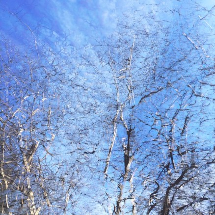 Up Overhead