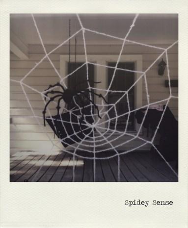 Spidey Sense