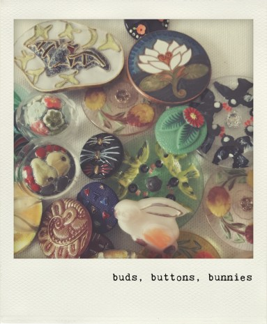 buds, buttons, bunnies