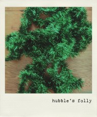hubbles-folly