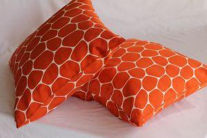 Interior Decorating Throw Pillows