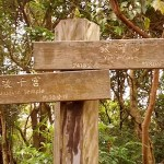 sign posts while hiking