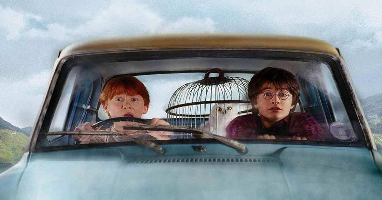 Harry Potter Dies