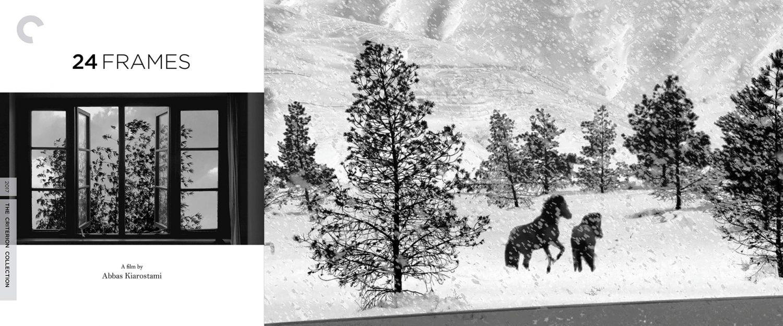 24 Frames is the final film from Iranian director Abbas Kiarostami.