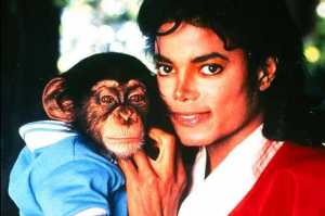 Animation film To Tell The Story Of Michael Jackson's Pet Chimp, Bubbles