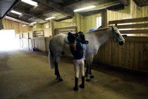 Shardeloes Farm Equestrian Centre