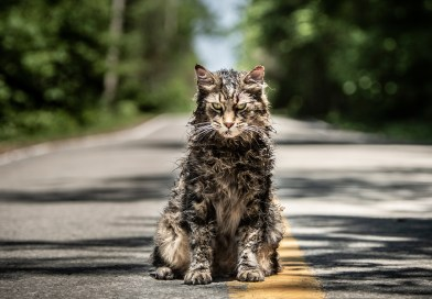 Pet Sematary Redux Lacks Excitement, Originality in Second Trailer