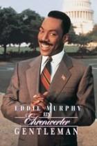 Ein ehrenwerter Gentleman (1993)