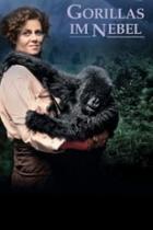 Gorillas im Nebel (1989)