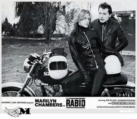 rabid-marilyn-chambers1