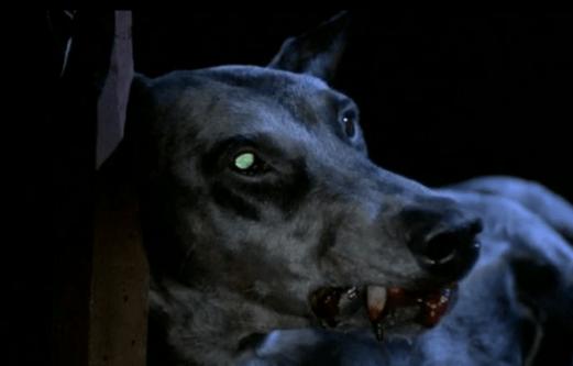 Zoltan-Hound-Of-Dracula-5