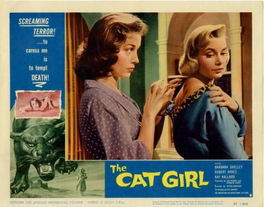 cat girl 2