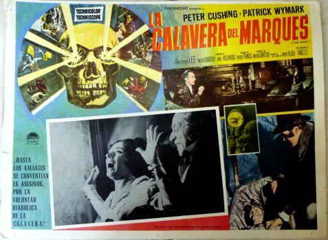 the skull la calavera del marques