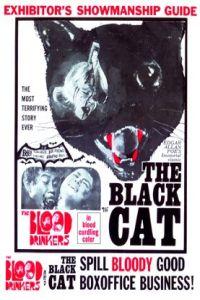 black-cat-1966