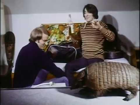 Shriek-of-the-Mutilated-1974-stuffed-armadillo