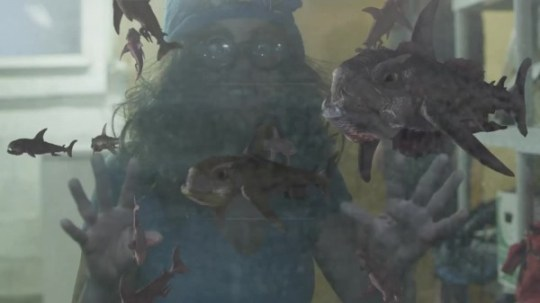 Piranha-Sharks-1-600x337
