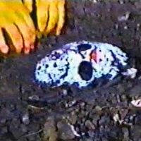 Friday the 13th: Halloween Night - short, USA, 1994