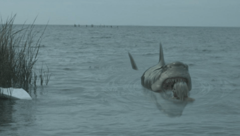 Zombie-Shark-2015