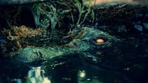 Zombie-Croc-3