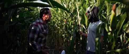 Fear-PHarm-2-movie-film-horror-skin-cream-2021-3