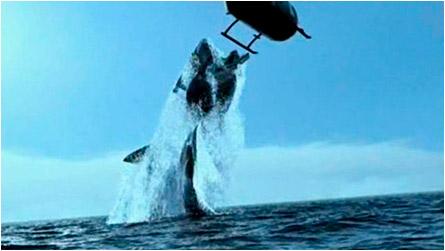 Shark_Attack_Mediterranean_4