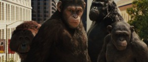 rise-of-the-planet-of-the-apes-caesar-600x255