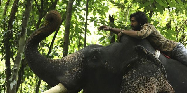 Kaadan Full Movie Download and release date on isaimini,Tamilyogi