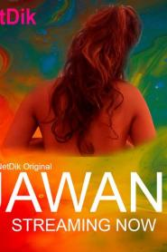 Jawani Hindi NetDik Web Series