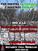No a los incendios forestales del PP