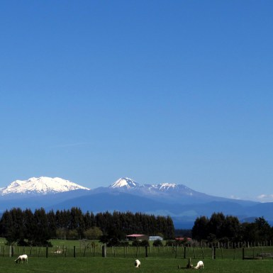 View from near Taupo