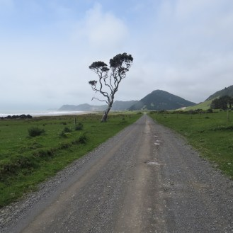 Road to East Cape Lighthouse