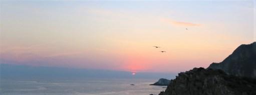 Birds Horizon web - Playa Maruata - Der Hippie Strand Michoácans