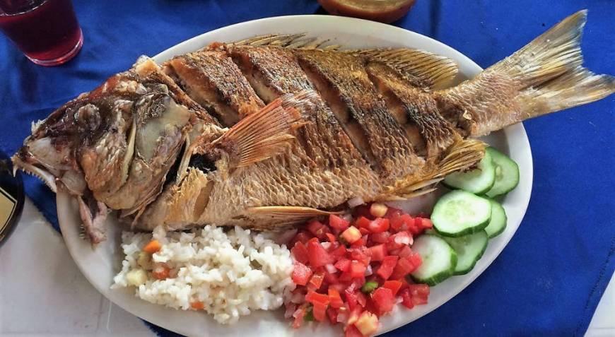 Frischer Fisch in Maruata