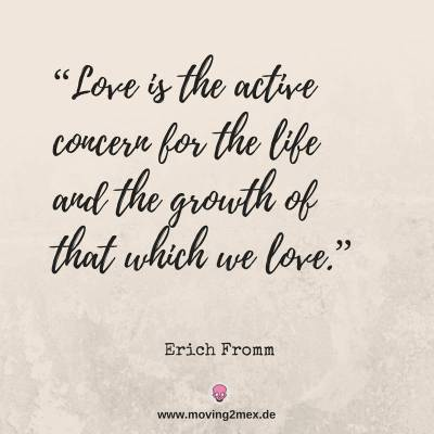Love is the active concern for the life and the growth of that wich we love.