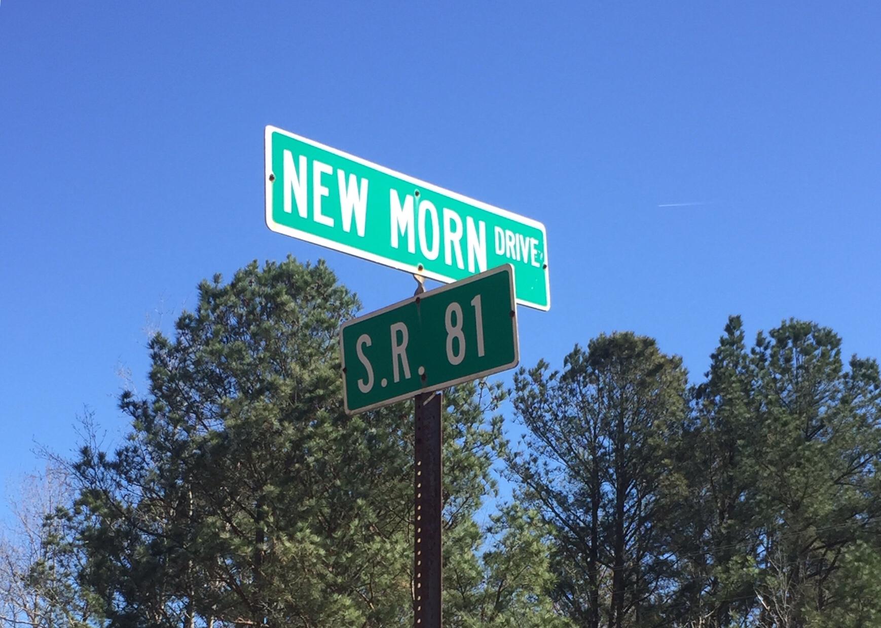 New Morn Drive at SR 81