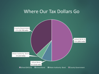 Pie chart showing Henry County property tax distribution (Henry County photo)