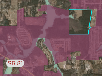Area map showing an outline of property at 1088 McGarity Road and surrounding area (Henry County qPublic photo)