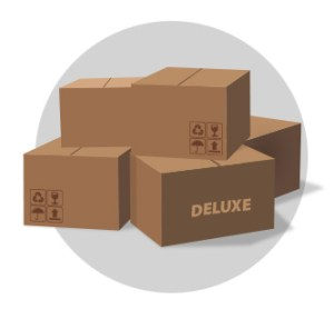 Deluxe Package for Packing Services