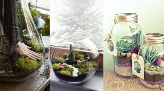 DIY : Réaliser son terrarium