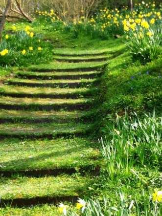 17.escalier-jardin-deco-pelouse
