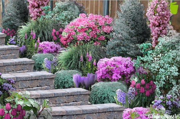 21.escalier-pierre-deco-plantes